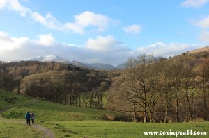 Path toward Fletcher's Wood and Wetherlam, Lake District, mountains