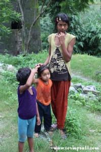 Sisters, towards Yuksom/Yuksum, Sikkim, India