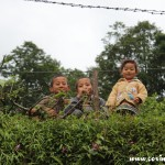 Children, Sikkim, India