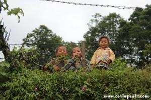 Children, Sikkim, India