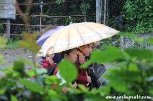 School children in the rain, Yuksom, Sikkim, India