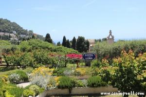 Gardens, Capri, Italy