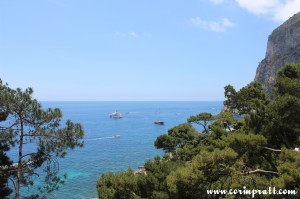 Coast, Trees, Capri, Italy
