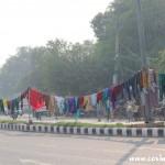 Washing, family, New Delhi, road