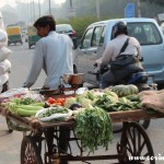 Traffic, bicycle, veg seller cart, New Delhi, road