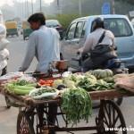 Traffic, bicycle, veg seller cart, New Delhi, road