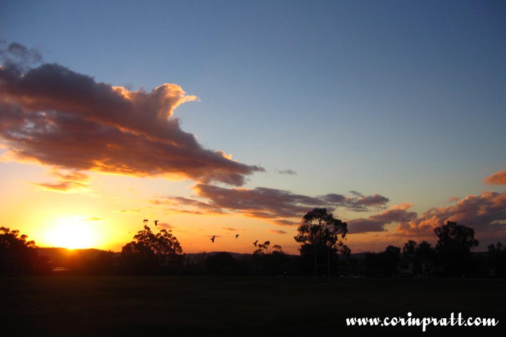 Sunset in Wagga Wagga, Australia